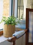 Как красиво украсить окна