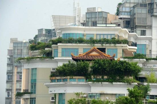 Необычное обустройство крыши